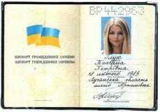 Ich möchte Sie bitten, diesen Pass zu überprüfen