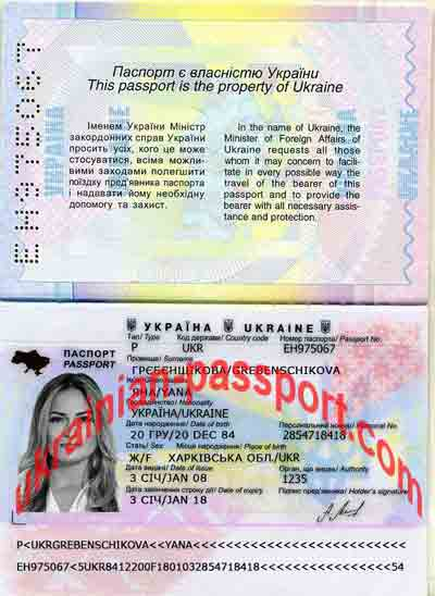 Passport and Person check