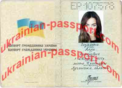 How do begin the process of passport verification