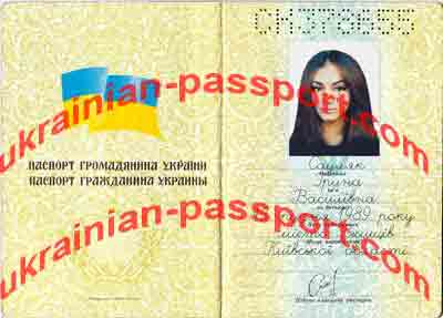 For gallery of fake passport