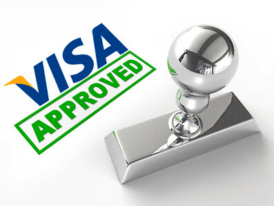 immigration visa status