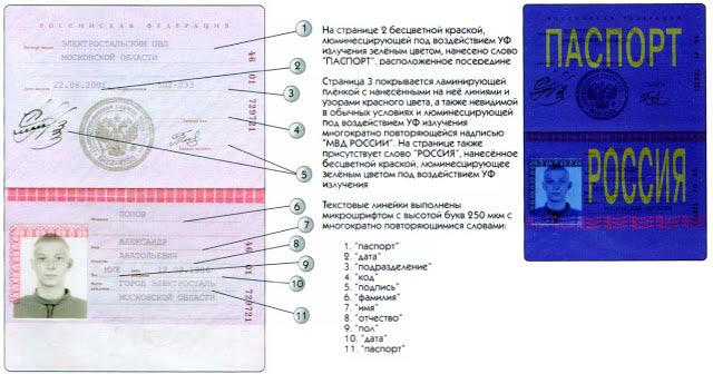 how to check russian passport