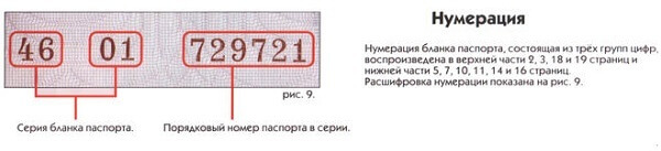 numbers in russia internal passport series number and id number